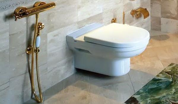 Гигиенический душ в дизайне интерьера