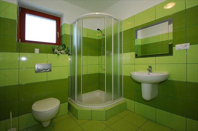 Зеленая ванная комната с душевой