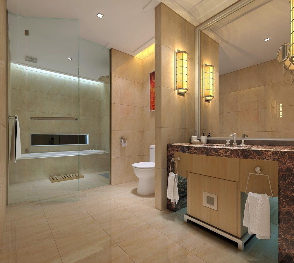 Интерьер с зонированием пространства ванной комнаты