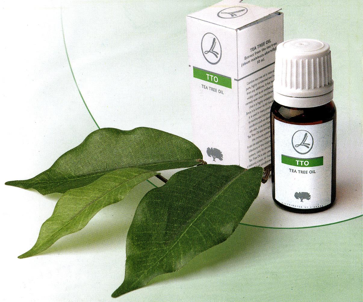 Масло чайного дерева поможет в борьбе с плесенью