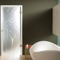 Стеклянная дверь в ванную комнату, обзор и их преимущества